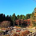 201711 日本神戶 六甲高山植物園
