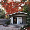 2010_11日本狩楓