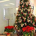 2008_1221_教會聖誕禮拜