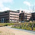 馬偕醫學院校地