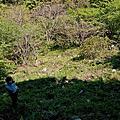 20130310_福智基金會植樹