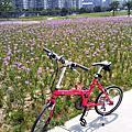 2011_小桃紅的單車生活