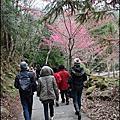 2011/02 武陵農場-春櫻之旅_PART2