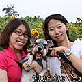 2009/05 向陽農場+皇后鎮森林