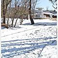 韓國‧釜山慶州滑雪五日遊