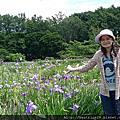 2012.07北海道道東周遊之旅6- 札幌:八紘學園花菖浦園