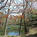 2009春的北海道自由行_大沼公園