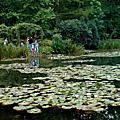 莫內花園Claude Monet