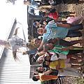 暑期戶外課程@萬丹市民農場