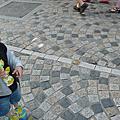 2008-05-11 三峽鶯歌一日遊
