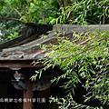 20140511板橋林家花園