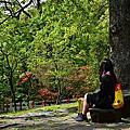 20150328陽明山,草山行館