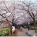 大阪。大阪城