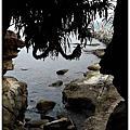 [新北金山|水尾漁港神秘海岸。88號水碼頭 海鮮餐廳]