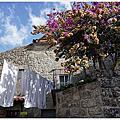 [葡萄牙|蒙桑圖Monsanto石頭城住宿與餐廳。Casa da Tia Piedade達蒂亞彼達迪度假屋。Adega Tipica O Cruzeiro]