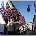 [葡萄牙自助|中世紀小鎮。Obidos歐比多斯]