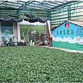 [新竹‧湖口]湖南茶葉生產合作社