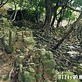 馬祖北竿大坵島