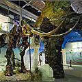 20130215 [台南新市] 樹谷生活科學館