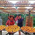 20130914 [新竹北埔] 味衛佳觀光果園拍柿子