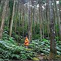 20140118 [新竹五峰] 五指山橫向步道&登美山莊