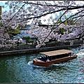 20140406 京都大阪賞櫻之旅-清水寺&平安神宮