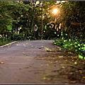 20150425 [新竹橫山] 大山背山騎龍古道