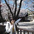 熊 日本旅行照