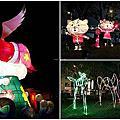 台中燈會再續攤 大里十九甲健康公園 可愛飛天豬、石虎花燈,共享美麗夜景