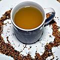 花蓮飲料店|貓頭鷹茶森林花蓮中山店-茶農自產自銷好茶,大推米其林紅韻、薰衣冰萊姆
