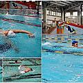 台中學游泳 樂活游泳快樂雄-大人也可以輕鬆學,一對一教學、客製化課程進度,成人游泳教學so easy