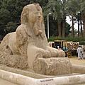 20070318-26埃及