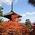 20161116京都