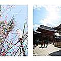【日本】京都大阪五天四夜自由行Day1、2  -八阪神社