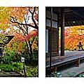 【日本】京都大阪五天四夜自由行Day2-嵐山常寂光寺、天龍寺、渡月橋