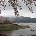 2014.4老弱婦孺自助遊東京