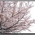 2016年 日本北九州