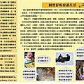 【桌遊月刊】寫樂桌遊