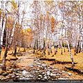 2014八千里路新疆遊