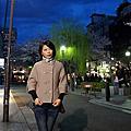 木屋町通高瀨川畔櫻花