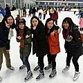 加拿大藍海-溜冰趣活動
