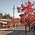 舊輕井澤銀座街道(旧軽井沢銀座通)