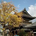 日本關西秋天之美