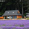 NZ 露營車之旅 Day 9