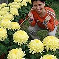 2008-11-23士林官邸菊展及夜市行