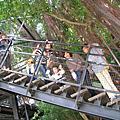 網友分享-319鄉遊記----台南市安平樹屋20110301