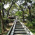 20060702_變葉木步道