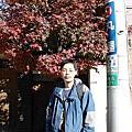 20051217_小石川後樂園