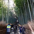 2015嵐山渡月橋/峨嗟竹林步道/野宮神社