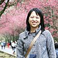 20080301九族櫻花記